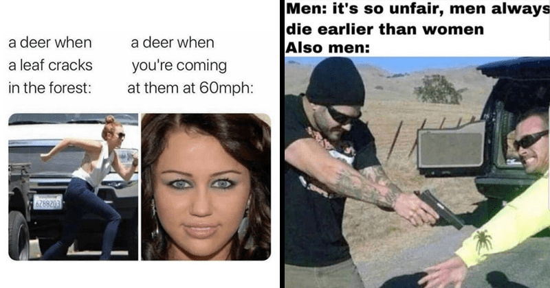 Funny random memes | deer leaf cracks forest deer coming at them at 60mph: Miley Cyrus' Blue Eyes | Men s so unfair, men always die earlier than women Also men: pointing gun at spider on a person's arm