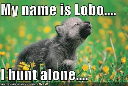 i am lobo i hunt alone
