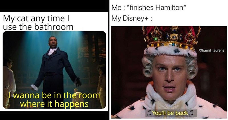 Memes about the musical Hamilton | My cat any time use bathroom wanna be room where happens | finishes Hamilton My Disney hamil_laurens You'll be back king in a powdered wig and a crown
