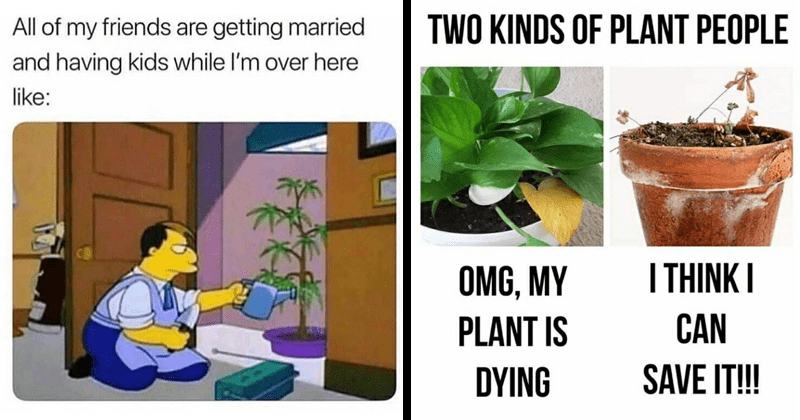 funny plant memes dank memes stupid memes random memes gardening memes | All my friends are getting married and having kids while l'm over here like: | TWO KINDS PLANT PEOPLE THINK OMG, MY PLANT IS CAN DYING SAVE !