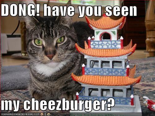 Cheezburger Image 1219870464