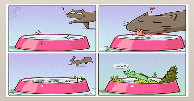 cats web comics funny catsu relatable cat aww cute lol comic animals | illustration drawing of a cat drinking from a bowl then an ecosystem grows in it