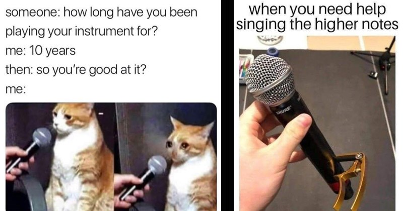 Funny memes about music | someone long have been playing instrument 10 years then: so good at crying cat being interviewed | need help singing higher notes SHURE