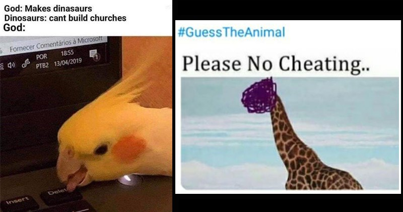 Funny and cute memes about animals | GuessTheAnimal Please No Cheating.. giraffe | God: Makes dinasaurs Dinosaurs: cant build churches God: 5 Fornecer Comentários Microsotft POR 18:55 PTB2 13/04/2019 Delete Insert bird pressing delete button