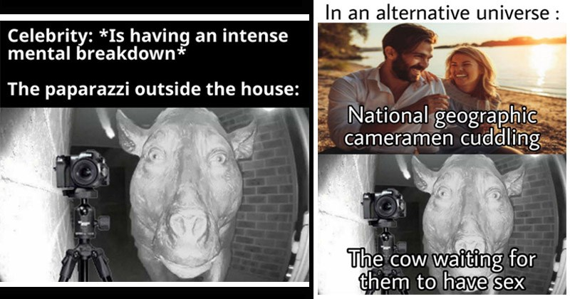 "Funny dank memes entitled, ""Daeodon at the Door"" cow looking through door camera 