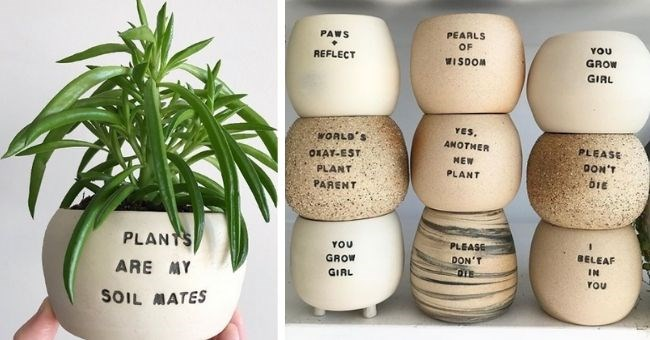 """pictures of plant pots with plant puns - cover pic pot with """"plants are my soil mates"""" written on 