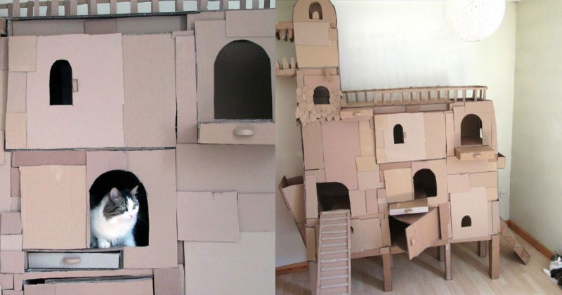 castle ark structure Cats cardboard