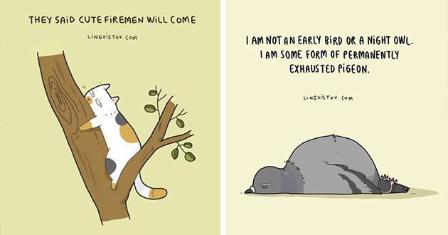animal illustrations funny lingvistov art artist comics animals pets cute relatable adorable lol | THEY SAID CUTE FIREMEN WILL COME LiNGviSTov. Com cat stuck in a tree | AM NOT AN EARLY BIRD OR NIGHT OWL. IAM SOME FORM PERMANENTLY EXHAUSTED PIGEON. LINGVISTOV O M