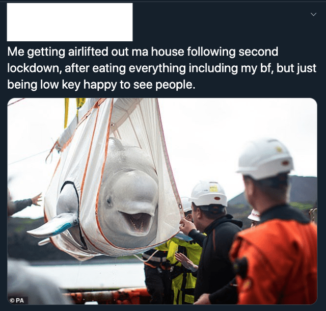 top ten daily tweets from white people twitter | Person - getting airlifted out ma house following second lockdown, after eating everything including my bf, but just being low key happy see people PA
