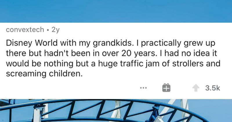 Travelers describe the places they'll never return to | convextech 2y Disney World with my grandkids practically grew up there but hadn't been over 20 years had no idea would be nothing but huge traffic jam strollers and screaming children. 3.5k