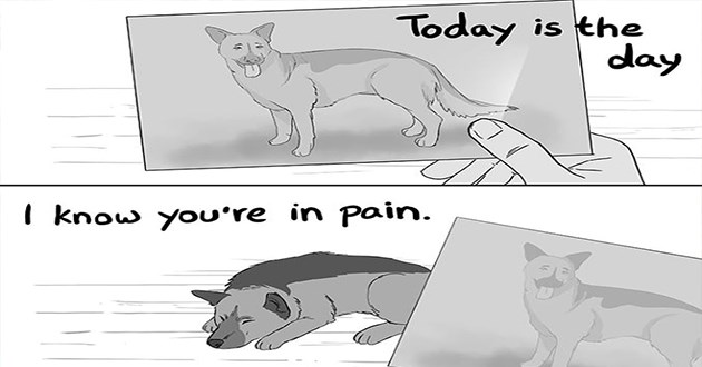 dogs comics death love animals jenyy jinya pets life mourning loss heartbreaking tearjerker | Today is day know pain. Ojennyjinya person looking at photograph of a dog next to the real dog who is old and weak