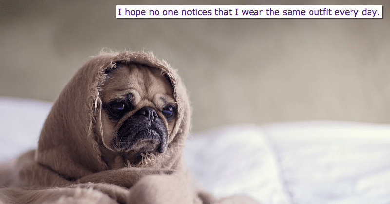 cute dog thinking about recycling the same outfit