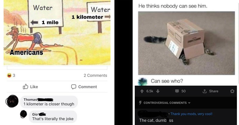 Funny Reddit posts showing people who did not understand obvious jokes on social media | Water Water 1 kilometer 1 mile Americans Thomas 1 kilometer is closer though Gio 's literally joke person crawling in the desert | He thinks nobody can see him. Can see who? CONTROVERSIAL COMMENTS Thank mods, very cool cat, dumbass cat hiding under a box