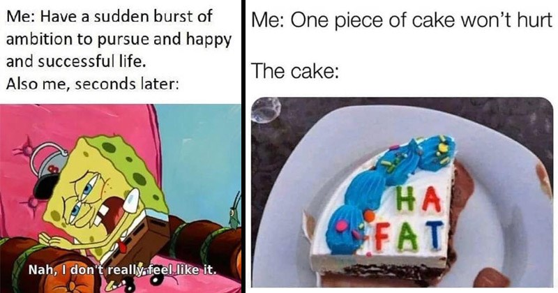 Funny random memes | Have sudden burst ambition pursue and happy and successful life. Also seconds later: Nah don't really feel like Spongebob on a couch | One piece cake won't hurt cake FAT