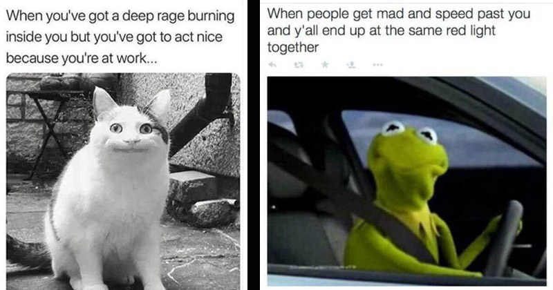 Funny memes about being frustrated | got deep rage burning inside but got act nice because at work cat smiling | people get mad and speed past and y'all end up at same red light together Kermit the frog driving a car