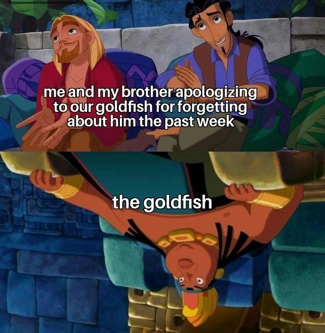 top ten 10 dank memes daily | road to El Dorado Miguel and Tulio explaining to the chief and my brother apologizing our goldfish forgetting about him past week goldfish