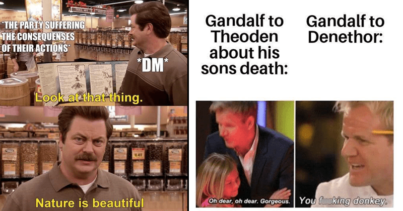 funny nerdy memes, gaming, dungeons and dragons, star wars, lord of the rings | TRAIL MIX PARTY SUFFERING THE CONSEQUENCES THEIR ACTIONS *DM* Look at thing. Nature is beautiful Ron Swanson | Gandalf Theoden about his sons death: Gandalf Denethor: Oh dear, oh dear. Gorgeous fucking donkey. Gordon Ramsay