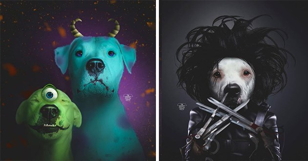 halloween pit bulls photoshop horror movies icons iconic cute aww animals dogs doggos pitbulls instagram art | Monsters Inc. Mike Wazowski Sully | Edward Scissorhands