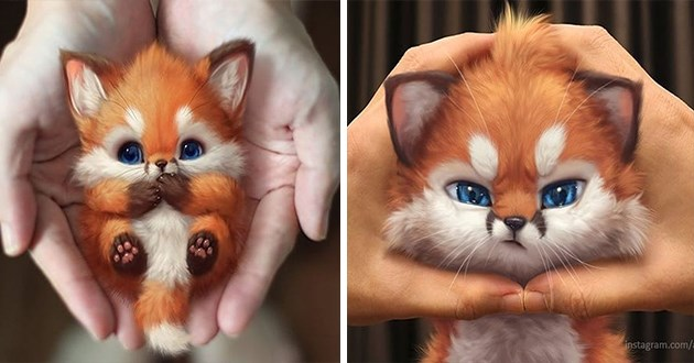 foxes fox aww art artist digital photoshop adorable cute animals imagination creative instagram yee chong