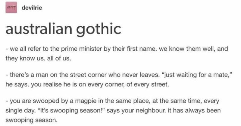 "Funny and creepy Australian Gothic tumblr thread | devilrie australian gothic all refer prime minister by their first name know them well, and they know us. all us there's man on street corner who never leaves just waiting mate he says realise he is on every corner every street are swooped by magpie same place, at same time, every single day s swooping season says neighbour has always been swooping season sometimes hear woman whispering late at night or early morning rage"" she hisses rage prime"