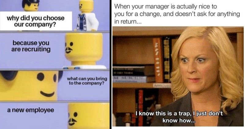 Funny memes about working | why did choose our company? because are recruiting can bring company new employee Lego doctor | manager is actually nice change, and doesn't ask anything return 836 know this is trap just don't know Leslie Knope Parks and Recreation