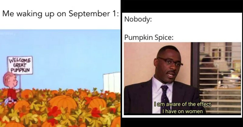 Funny memes about fall, autumn | Nobody: Pumpkin Spice am aware effect have on women Idris Elba the Office | Me waking up on September welcome GREAT pumpkin Peanuts Linus