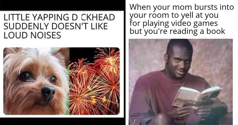 Funny random memes | LITTLE YAPPING DICKHEAD SUDDENLY DOESN'T LIKE LOUD NOISES dog fireworks | mom bursts into room yell at playing video games but reading book