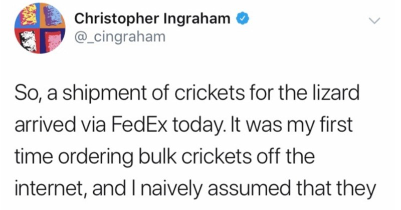 A Twitter thread about a dad's disastrous crickets delivery experience | Christopher Ingraham O @_cingraham So shipment crickets lizard arrived via FedEx today my first time ordering bulk crickets off internet, and naively assumed they would be like bag or some other contraption facilitate easy transfer another container. They were not.