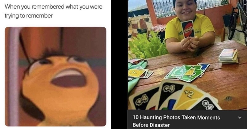 Funny random memes | remembered were trying remember Bee movie | UNO 2 10 Haunting Photos Taken Moments Before Disaster