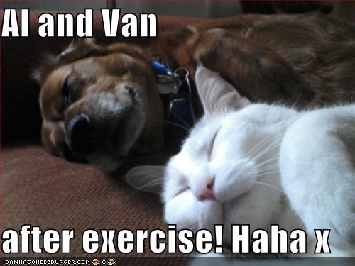 Al And Van After Exercise Haha X Cheezburger Funny Memes Funny Pictures