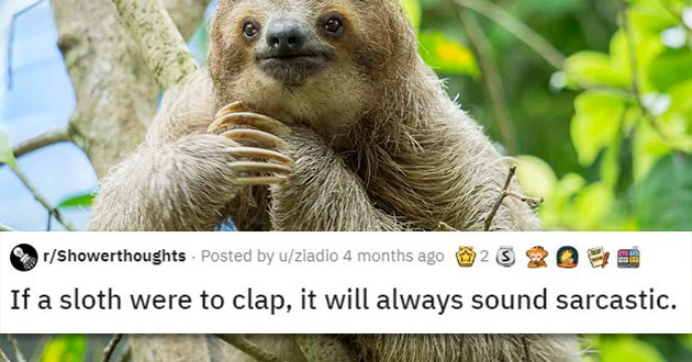 shower thoughts animals crazy edition deep interesting wtf mind blowing bending fascinating | r/Showerthoughts Posted by u/ziadio 4 months ago 2 3 If sloth were clap will always sound sarcastic.