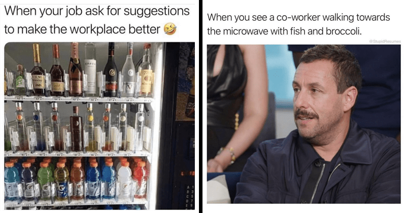 Funny work memes, relatable work memes, dank memes, office memes | job ask suggestions make workplace better wine alcohol | see co-worker walking towards microwave with fish and broccoli StupidResumes