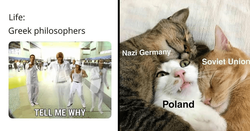 funny memes about history, european history, war memes, religion memes | Life: Greek philosophers TELL WHY | Nazi Germany Soviet Union Poland cat surrounded by two other cats