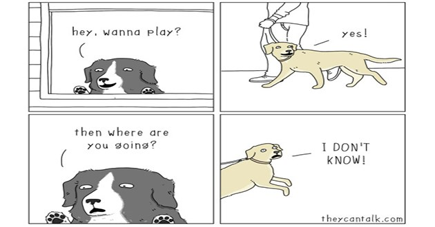 they can talk comics web comic animals animal lol funny comedy humor hilarious instagram facebook art artist | hey. wanna play? then where are you going? yes 1 DON'T KNOW! theycantalk com