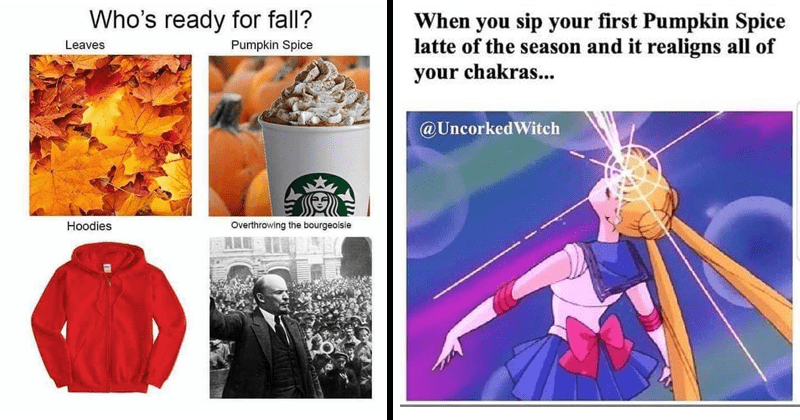 Pumpkin Spice Memes basic bitches autumn fall | Who's ready fall? Leaves Pumpkin Spice Hoodies Overthrowing bourgeoisie | sip first Pumpkin Spice latte season and realigns all chakras UncorkedWitch Sailor Moon