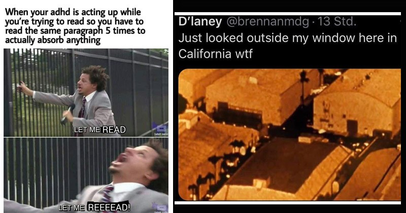 Funny random memes | adhd is acting up while trying read so have read same paragraph 5 times actually absorb' anything LET READ [adult swim LET REEEEAD! Todult rwim Eric Andre let me in | D'laney @brennanmdg 13 Std. Just looked outside my window here California wtf Warner Bros. intro