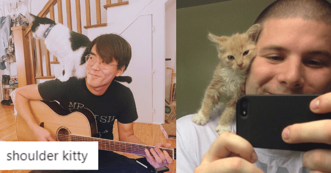 cats sitting on humans' shoulders thumbnail includes two pictures including a guy playing the guitar with a cat on his shoulder and another guy taking a selfie with a kitten on his shoulder