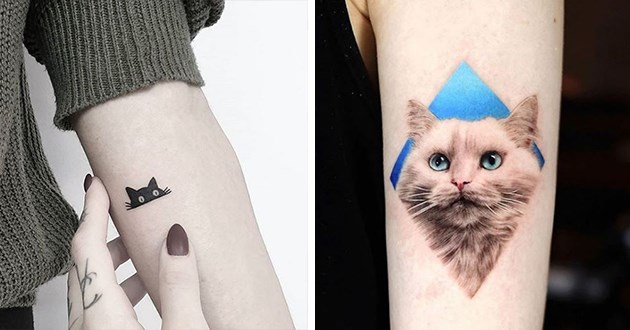 beautiful and amazing cat tattoos by various artists - thumbnail includes two images one of little cute black cat and intricate detailed tatt of beautiful cat