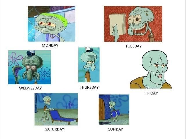 spongebob squarepants funny memes bikini bottom stephen hillenburg patrick star squidward week mr. krabs   MONDAY TUESDAY WEDNESDAY THURSDAY FRIDAY SATURDAY SUNDAY handsome squidward