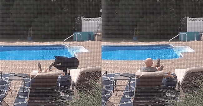 man sleeping poolside wakes up when approached by wild bear security camera footage shocking surprising nature encounter close call wow | snaps of black bear touching lounging man's foot and man sitting up in surprise
