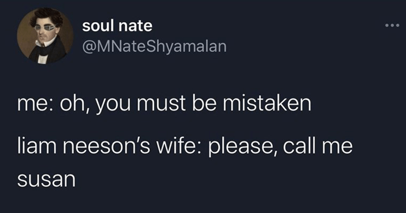 funny random tweets, clever tweets, twitter memes, humor, comedy writing | soul nate @MNateShyamalan oh must be mistaken liam neeson's wife: please, call susan