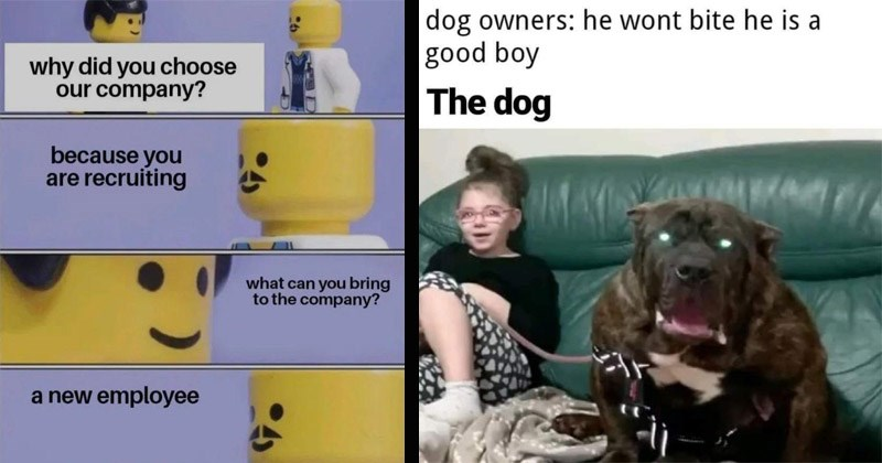 Funny random memes | why did choose our company? because are recruiting can bring company new employee lego doctor | dog owners: he wont bite he is good boy dog giant dog with glowing eyes