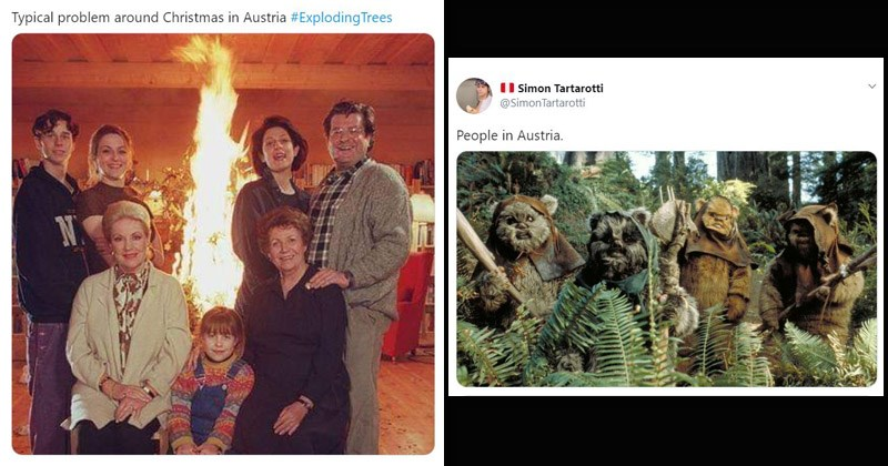 Funny memes about Trump's comments about 'exploding trees' in Austria | Teresa Grohmann @GrohmannTeresa Typical problem around Christmas Austria #Exploding Trees family photo | Simon Tartarotti @Simon Tartarotti People Austria Star Wars Ewoks