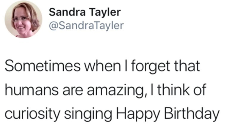 A quick and funny Tumblr thread on humans' wholesome love for the Curiosity Rover | Sandra Tayler @SandraTayler Sometimes forget humans are amazing think curiosity singing Happy Birthday on Mars, and this response: