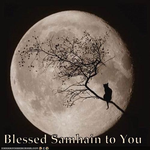 Blessed Samhain to You