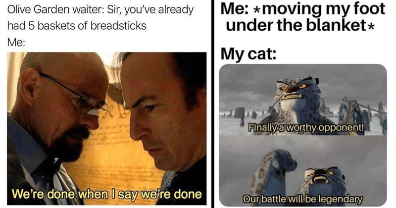 funny random memes, relatable memes, dungeons and dragons memes, tumblr, stupid memes, funny tweets | Olive Garden waiter: Sir already had 5 baskets breadsticks done say done Breaking Bad Walter White and Saul Goodman | moving my foot under blanket My cat: Finally a worthy opponent! Our battle will be legendary