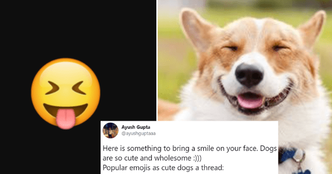 twitter thread of dog pictures being compared to emojis | Ayush Gupta @ayushguptaaa Here is something bring smile on face. Dogs are so cute and wholesome Popular emojis as cute dogs thread