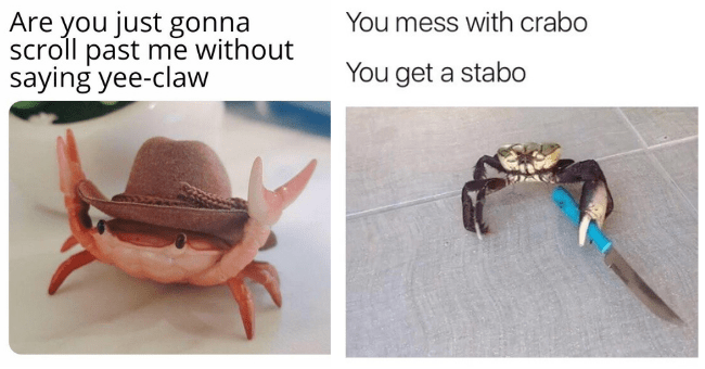 collection of crab memes thumbnail includes two pictures including a tiny crab with a cowboy hat on lifting its front claws 'Crab - Are you just gonna scroll past me without saying yee-claw' and another crab holding a knife in a threatening way 'Organism - You mess with crabo You get a stabo'