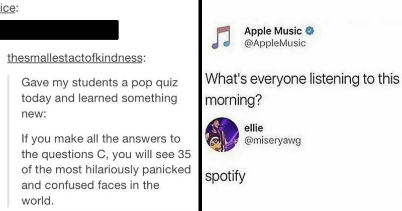 A collection of times that people were absolute mad lads on social media | morice: blaineheavenanderson: thesmallestactofkindness: Gave my students pop quiz today and learned something new: If make all answers questions C will see 35 most hilariously panicked and confused faces world | Apple Music O @AppleMusic 's everyone listening this morning? ellie @miseryawg spotify