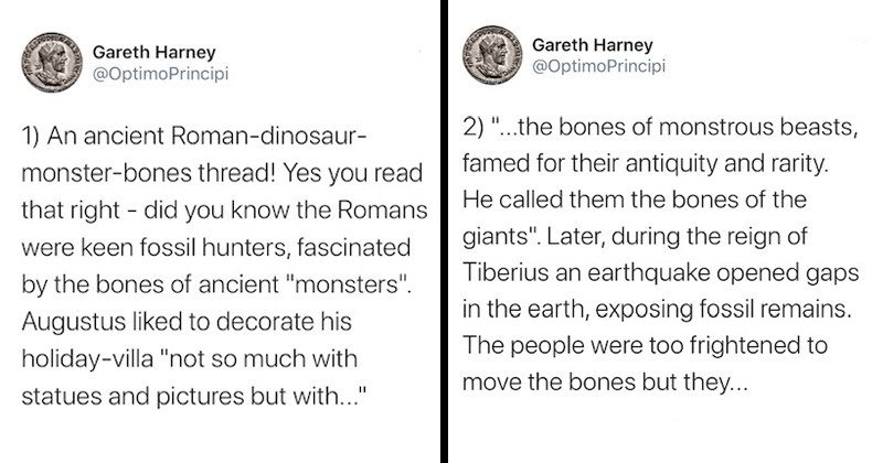 "Informative Twitter thread about the history of Ancient roman fossil hunting, archaeology, paleontology, dinosaurs, mammoths, extinct animals | Gareth Harney @OptimoPrincipi 1) An ancient Roman-dinosaur- monster-bones thread! Yes read right did know Romans were keen fossil hunters, fascinated by bones ancient ""monsters Augustus liked decorate his holiday-villa ""not so much with statues and pictures but with 